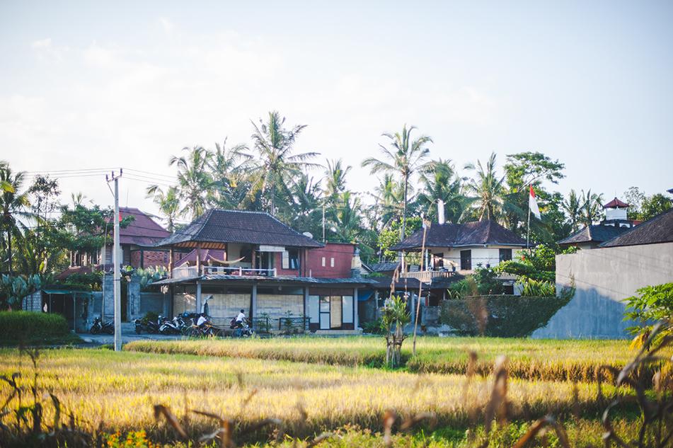 Bali blog 10