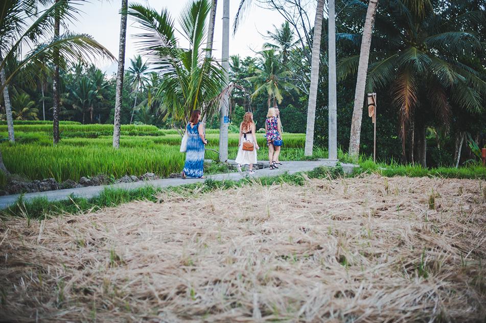 Bali blog 24