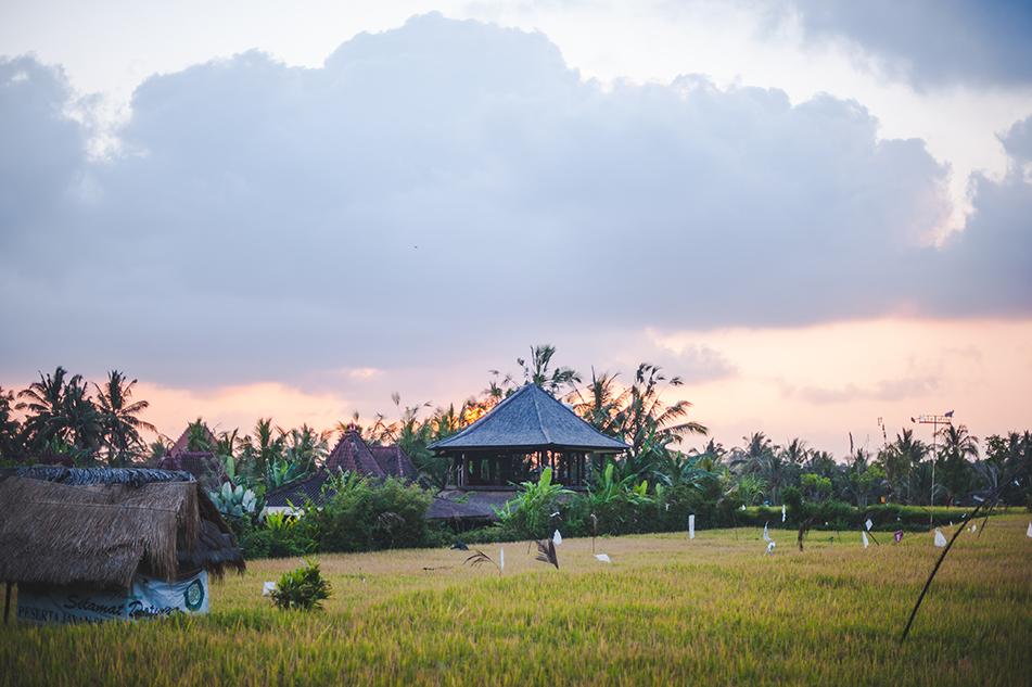 Bali blog 27