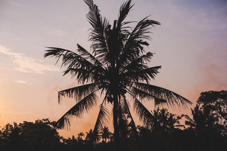 Bali blog 77
